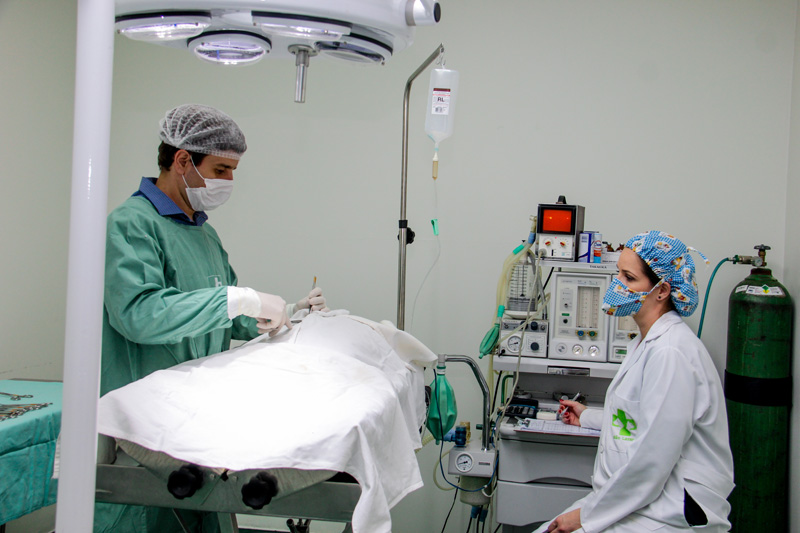 cirurgia 1